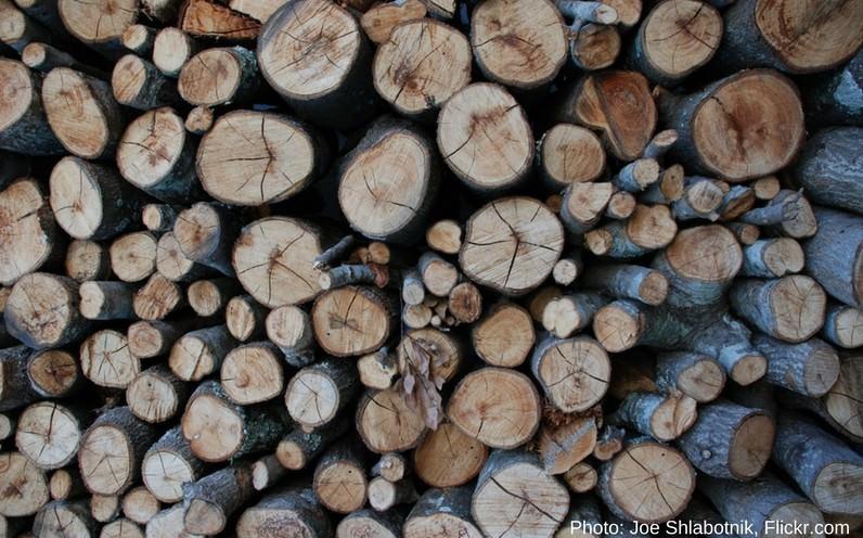 la madera como fuente de energia